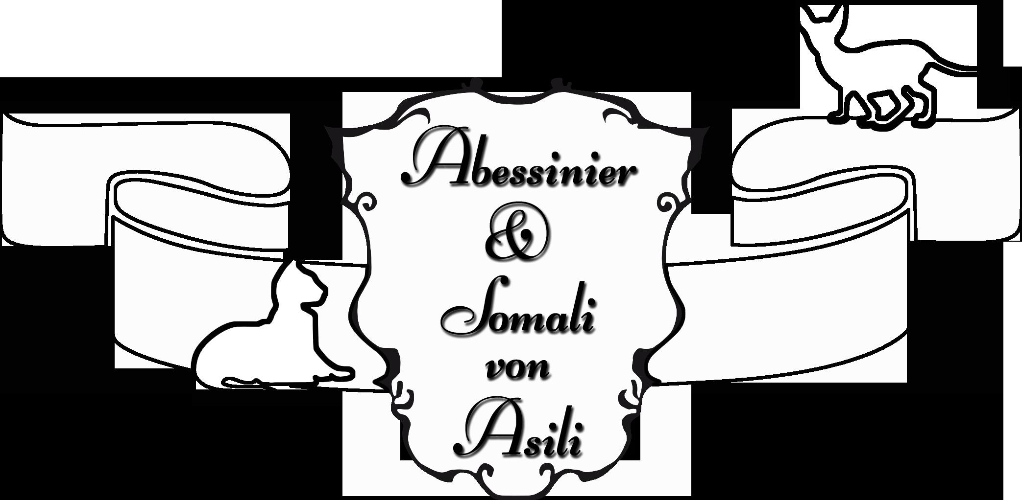 Asilis